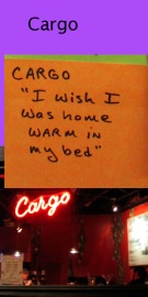whats on your mind cargo cafe?