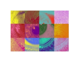 Eye, Lips by Lisa Marie Patzer